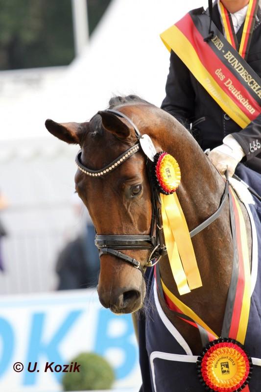Bundeschampionesse 2013